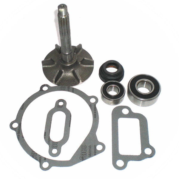 Coolant pump repair kit - Flaminia 2,8 L